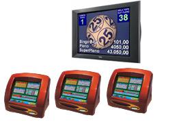 bingo telematico